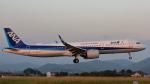 Cassiopeia737さんが、高知空港で撮影した全日空 A321-272Nの航空フォト(写真)