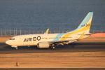 テクノジャンボさんが、羽田空港で撮影したAIR DO 737-781の航空フォト(写真)
