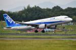 turenoアカクロさんが、高松空港で撮影した全日空 A320-211の航空フォト(写真)