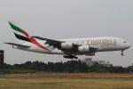 テクノジャンボさんが、成田国際空港で撮影したエミレーツ航空 A380-861の航空フォト(写真)