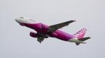 てつさんが、関西国際空港で撮影したピーチ A320-214の航空フォト(写真)