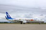 安芸あすかさんが、仙台空港で撮影した全日空 737-881の航空フォト(写真)