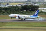 もぐ3さんが、仙台空港で撮影した全日空 737-881の航空フォト(写真)