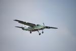 りゅうさんさんが、調布飛行場で撮影した共立航空撮影 208 Caravan Iの航空フォト(写真)