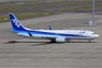 キイロイトリ1005fさんが、中部国際空港で撮影した全日空 737-881の航空フォト(写真)