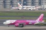 VIPERさんが、羽田空港で撮影したピーチ A320-214の航空フォト(写真)