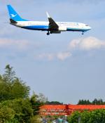 mojioさんが、成田国際空港で撮影した厦門航空 737-85Cの航空フォト(飛行機 写真・画像)