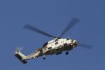 とらとらさんが、厚木飛行場で撮影した海上自衛隊 SH-60Jの航空フォト(写真)