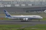 qooさんが、羽田空港で撮影した全日空 787-8 Dreamlinerの航空フォト(写真)