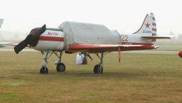 cathay451さんが、ベーフェルロ空軍基地で撮影したYakkes Foundation Yak-52の航空フォト(飛行機 写真・画像)