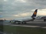 さゆりんごさんが、フランクフルト国際空港で撮影したルフトハンザドイツ航空 A340-313Xの航空フォト(写真)
