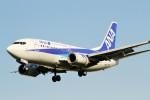 raiden0822さんが、伊丹空港で撮影したANAウイングス 737-54Kの航空フォト(写真)