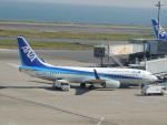 さゆりんごさんが、羽田空港で撮影した全日空 737-881の航空フォト(写真)