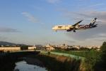 VIPERさんが、伊丹空港で撮影した全日空 787-8 Dreamlinerの航空フォト(写真)