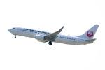 triton@blueさんが、岡山空港で撮影した日本航空 737-846の航空フォト(写真)