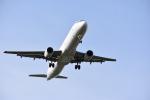 ステラさんが、トゥールーズ・ブラニャック空港で撮影したエールフランス航空 A321-212の航空フォト(写真)