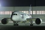 いっとくさんが、伊丹空港で撮影した全日空 787-8 Dreamlinerの航空フォト(写真)