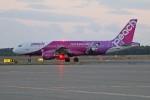 北の熊さんが、新千歳空港で撮影したピーチ A320-214の航空フォト(写真)