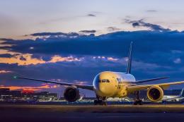 mameshibaさんが、羽田空港で撮影した全日空 787-8 Dreamlinerの航空フォト(写真)
