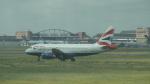 ステラさんが、トゥールーズ・ブラニャック空港で撮影したブリティッシュ・エアウェイズ A319-131の航空フォト(写真)