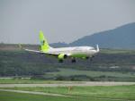 MARK0125さんが、新石垣空港で撮影したジンエアー 737-8B5の航空フォト(写真)