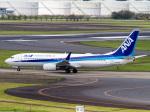 Mame @ TYOさんが、成田国際空港で撮影した全日空 737-881の航空フォト(写真)