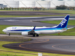 Mame @ TYOさんが、成田国際空港で撮影した全日空 737-881の航空フォト(飛行機 写真・画像)