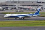 tsubasa0624さんが、羽田空港で撮影した全日空 A321-211の航空フォト(写真)