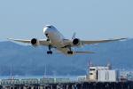 yabyanさんが、関西国際空港で撮影した日本航空 787-8 Dreamlinerの航空フォト(飛行機 写真・画像)