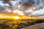 mameshibaさんが、成田国際空港で撮影したエティハド航空 787-9の航空フォト(写真)