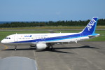 SFJ_capさんが、鳥取空港で撮影した全日空 A320-211の航空フォト(写真)
