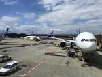 BIGFORCEさんが、成田国際空港で撮影した全日空 787-8 Dreamlinerの航空フォト(写真)