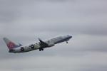 meijeanさんが、成田国際空港で撮影したチャイナエアライン 737-8FHの航空フォト(写真)