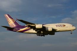 matatabiさんが、成田国際空港で撮影したタイ国際航空 A380-841の航空フォト(写真)