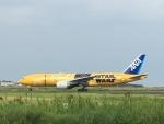 Tatsu mitsuさんが、宮崎空港で撮影した全日空 777-281/ERの航空フォト(写真)