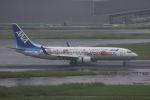 yousei-pixyさんが、羽田空港で撮影した全日空 737-881の航空フォト(写真)