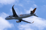 yabyanさんが、関西国際空港で撮影したタイガーエア台湾 A320-232の航空フォト(飛行機 写真・画像)