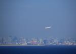 タミーさんが、羽田空港で撮影した日本航空 777-246/ERの航空フォト(写真)