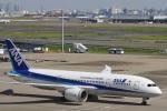 camelliaさんが、羽田空港で撮影した全日空 787-8 Dreamlinerの航空フォト(写真)