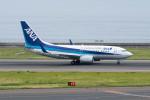 ポン太さんが、中部国際空港で撮影した全日空 737-781の航空フォト(写真)