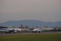 bokukan1310さんが、伊丹空港で撮影した全日空 737-881の航空フォト(飛行機 写真・画像)