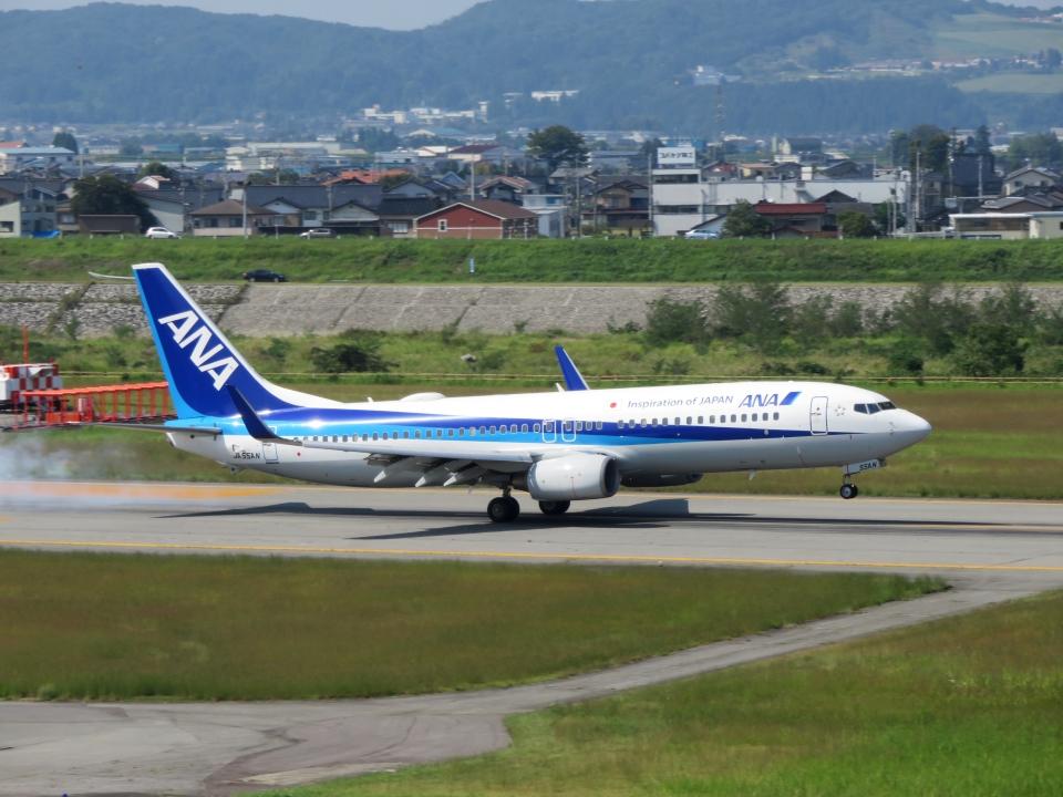 aquaさんの全日空 Boeing 737-800 (JA55AN) 航空フォト
