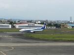 Tatsu mitsuさんが、宮崎空港で撮影した全日空 737-881の航空フォト(写真)