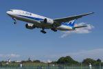 lonely-wolfさんが、伊丹空港で撮影した全日空 777-281の航空フォト(写真)