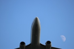 つっさんさんが、伊丹空港で撮影した全日空 737-881の航空フォト(飛行機 写真・画像)