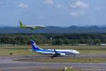 dragonflyさんが、新千歳空港で撮影した全日空 737-881の航空フォト(写真)