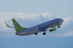 yabyanさんが、中部国際空港で撮影したソラシド エア 737-86Nの航空フォト(写真)