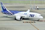 pikazouさんが、羽田空港で撮影した全日空 787-8 Dreamlinerの航空フォト(飛行機 写真・画像)