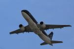 tecasoさんが、関西国際空港で撮影したスターフライヤー A320-214の航空フォト(写真)