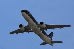tecasoさんが、関西国際空港で撮影したスターフライヤー A320-214の航空フォト(飛行機 写真・画像)
